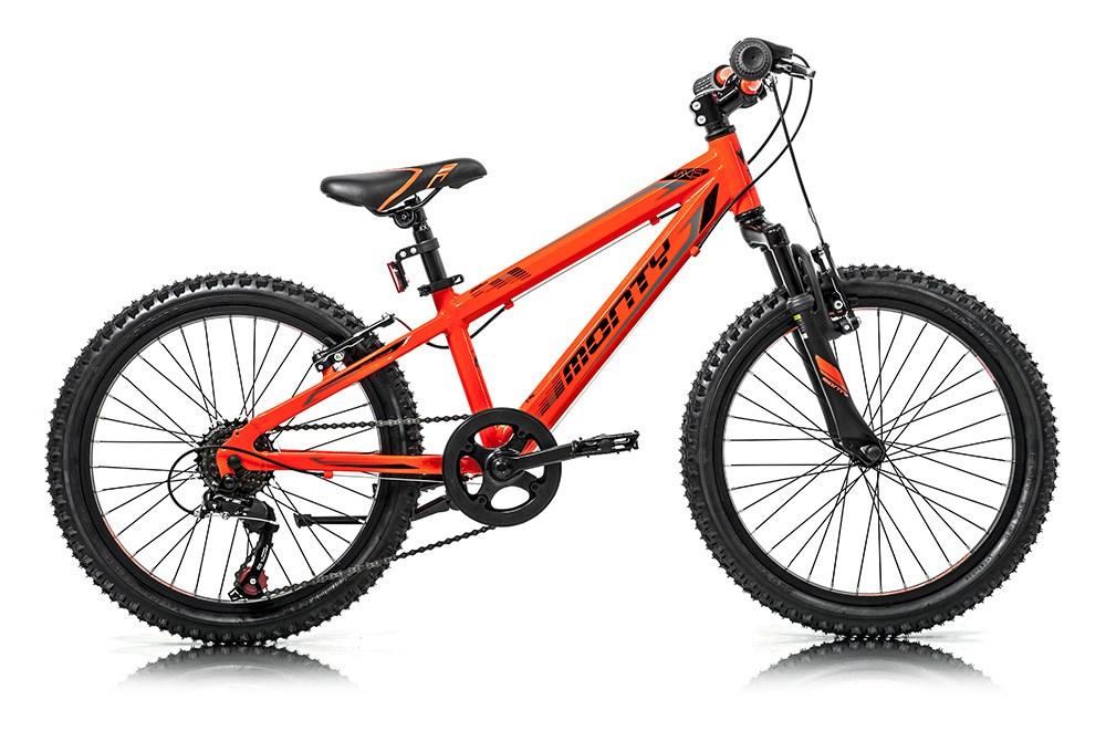 Bicicleta Moncada